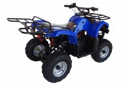 Hurry! ATV Volta Hunter 36V, 800W, 35 km/h