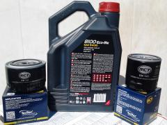 "Synthetic oil,""MOTUL 8100 ECO-lite 5W-30""sell.And the filter GIVES"